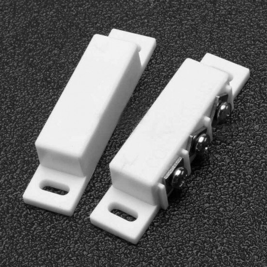 Security Reed Switch (55x12.5mm)